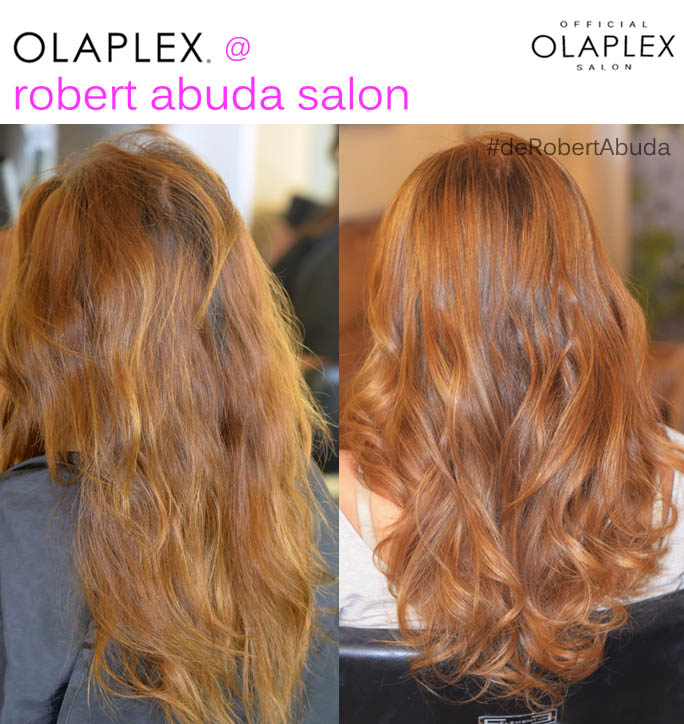 Olaplex Hair Salon Merida4